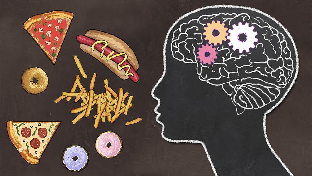 Ilustração com uma silhueta de cabeça com cérebro à direita e junk food à esquerda.