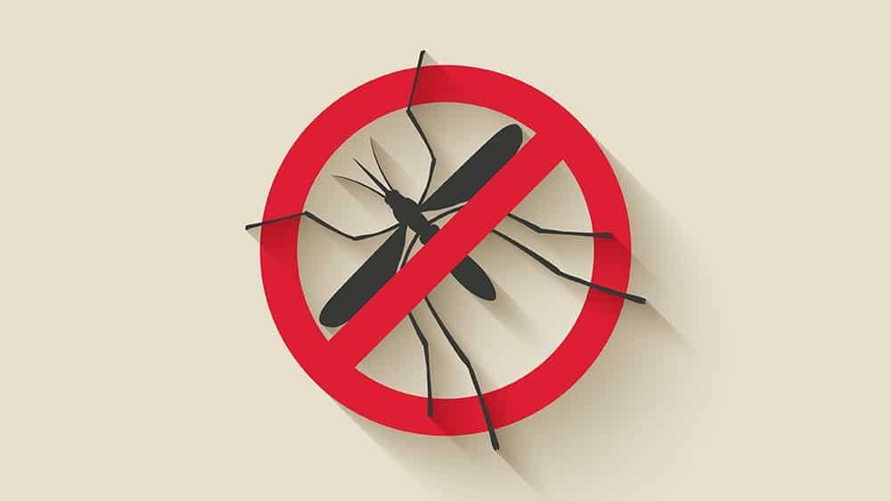 Ilustração com silhueta de mosquito e sinal vermelho de proibido em cima.