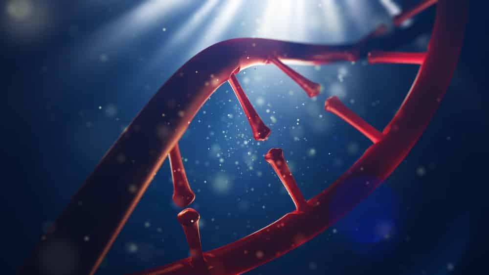 Identificar genomas a preços módicos criará condições para o surgimento de uma medicina preventiva individualizada.