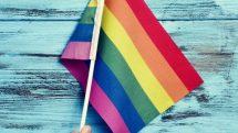 Causas da homossexualidade | Artigo