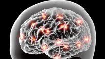 Os bombardeios e o cérebro | Artigo