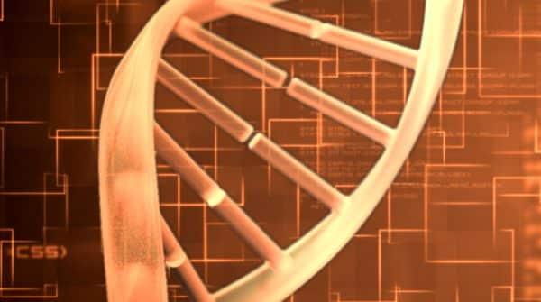Os genes e a alma humana