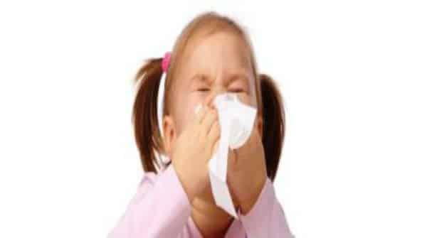 O esconderijo da gripe | Artigo