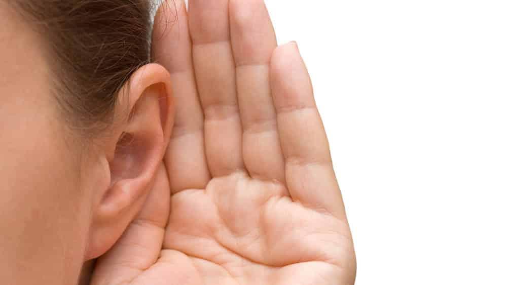 orelha audição