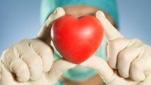 Doação e transplante de órgãos no Brasil | Entrevista