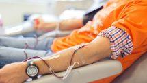 Reabilitação em hemofilia | Entrevista