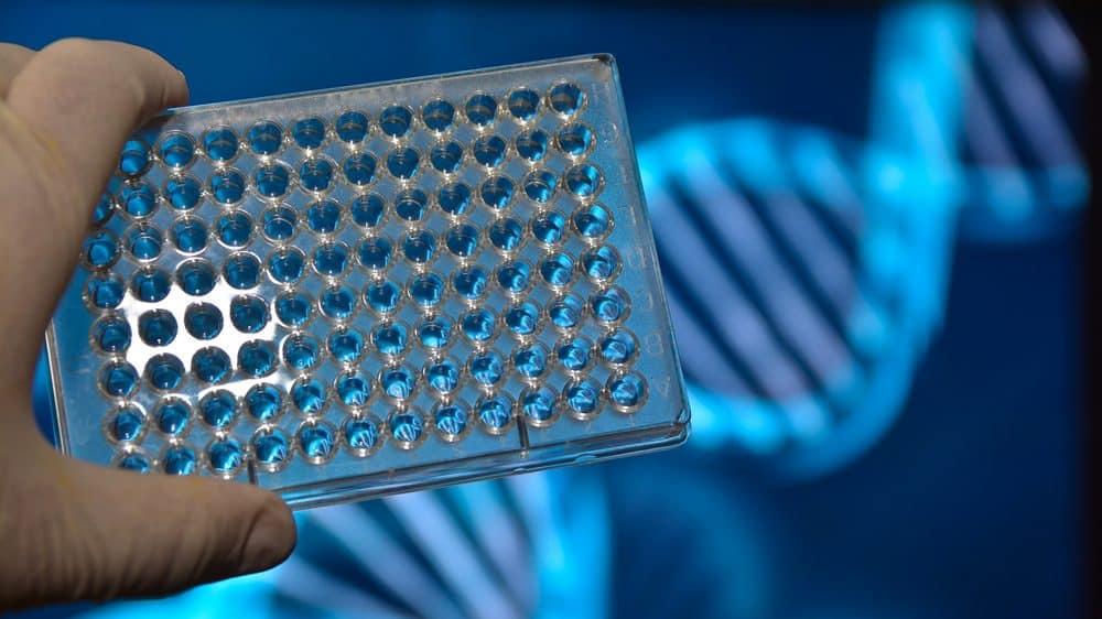 placa de teste de DNA. sequenciamento genético personalizado ainda está distante