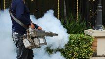 homem dedetiza área em que pode haver o mosquito da dengue