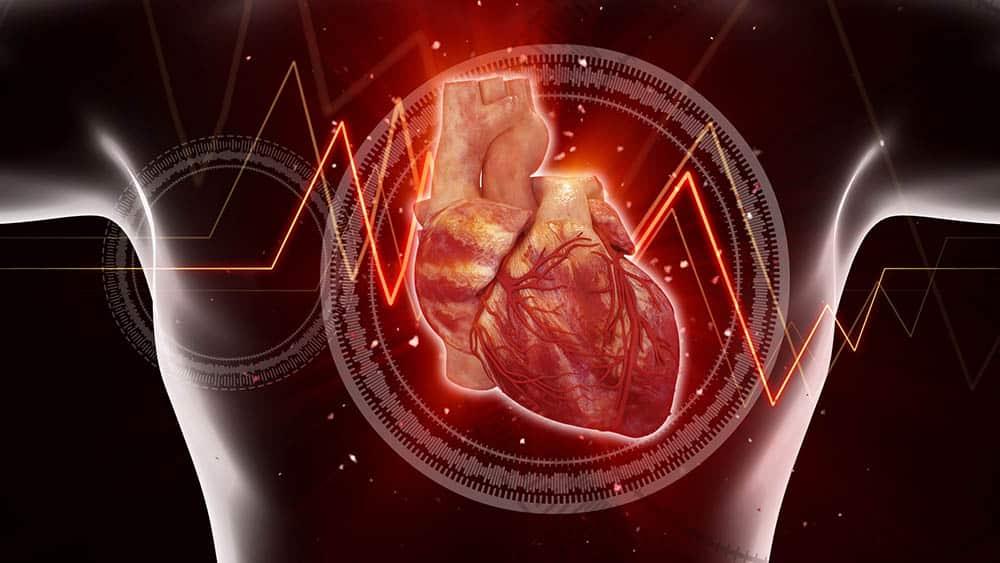 Ilustração 3D de coração humano.