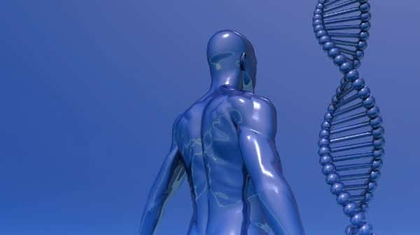 A genética das raças