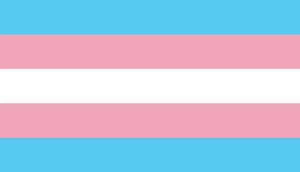 Banheiros transgêneros | Artigo