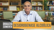 comenta desidrogenase alcoólica