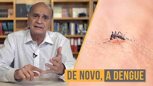 dengue culpa