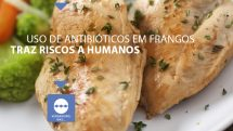 drops frango antibiotico