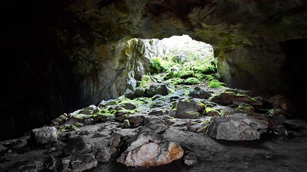 entrada de caverna histoplasmose