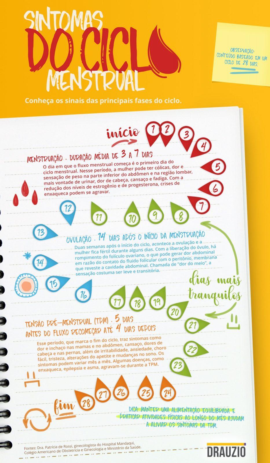 Infográfico com os principais sintomas do ciclo menstrual.