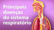 """Ilustração de sistema respiratório humano com texto """"principais doenças do sistema respiratório""""."""