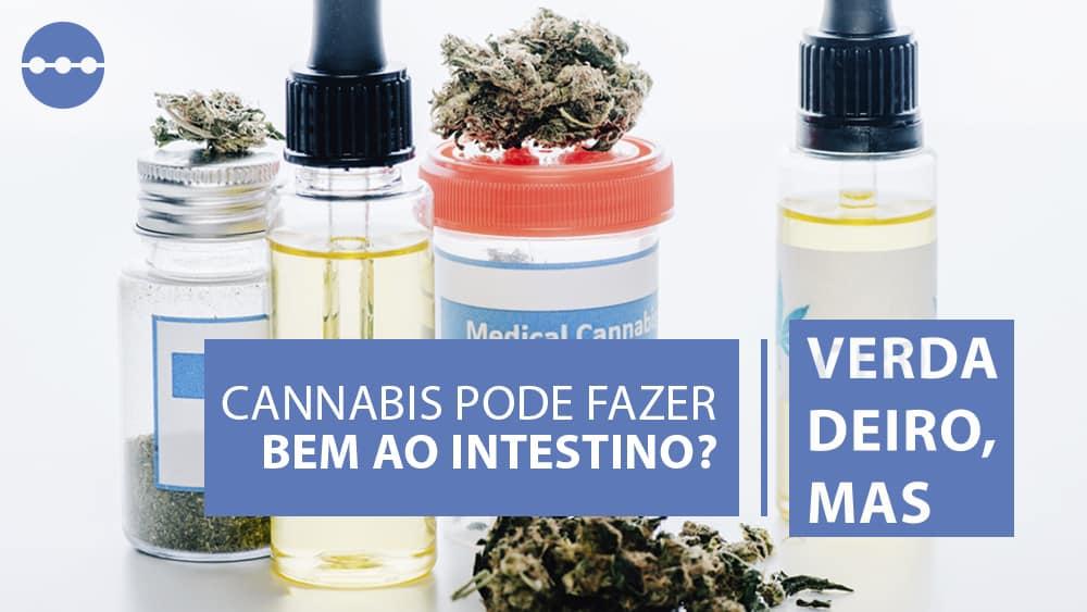 produtos à base de cannabis, que podem fazer bem para doenças do intestino