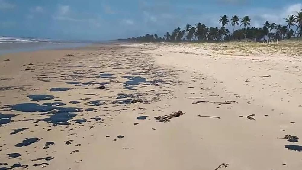 Praia do nordeste com vazamento de óleo | João Arthur (Projeto Tamar)
